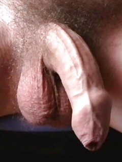 Hairy Gay Cock Porn